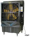 Охладитель воздуха Master BC 220 в Волгограде